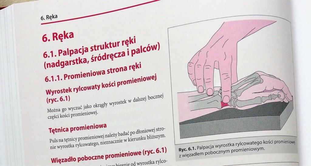 anatomia funkcjonalna dla fizjoterapeutów recenzja książki